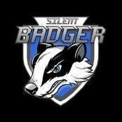 Silentbadger2